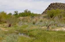 Shoshone interpretive trail