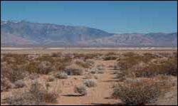 Desert Shoshone Village