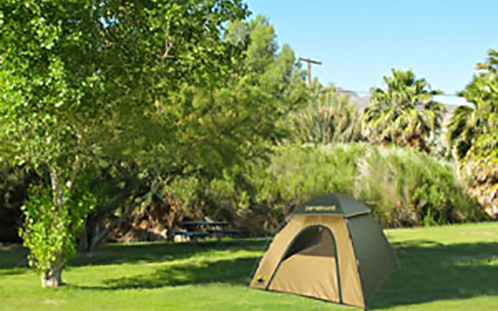 Reserve a campsite at Shoshone campground.